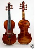 5 String Electric Violins and 6 string Electric Violins.